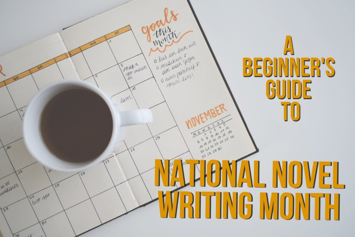 NaNoWriMo – A Beginner's Guide