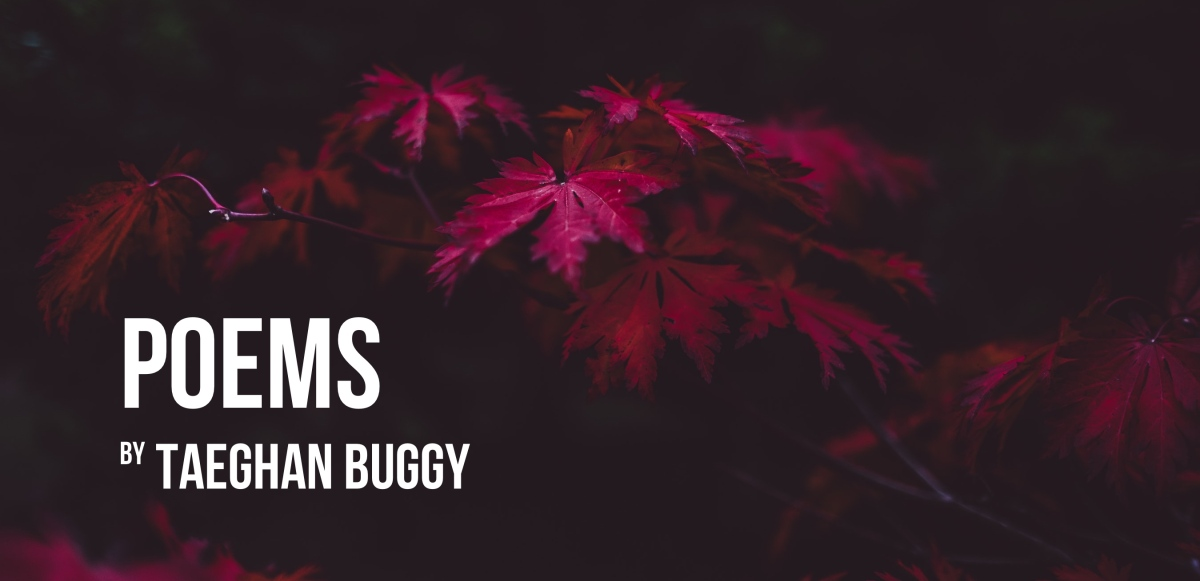 'We Are Quiet & The Bed is Warm.' – Poems by Taeghan Buggy