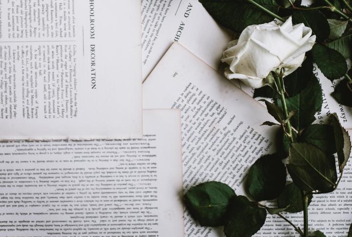 Adelaide Writers Week: The Garden of LiteraryDelights